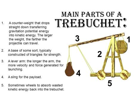Trebuchet : Main Parts of a 1.A counter-weight that drops straight down transferring gravitation potential energy into kinetic energy. The larger the weight,