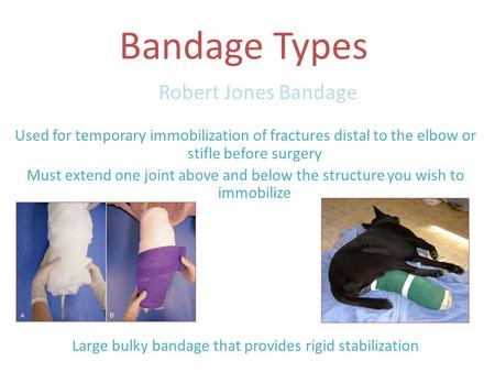 Bandage Types Robert Jones Bandage Used for temporary immobilization of fractures distal to the elbow or stifle before surgery Must extend one joint above.