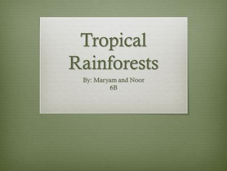 Tropical Rainforests By: Maryam and Noor 6B. The Tropical Rainforests  This is a map of the tropical rainforests  This is a photo of how the tropical.