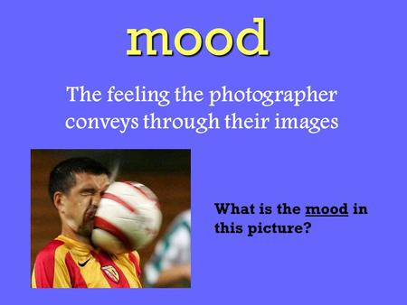 Mood The feeling the photographer conveys through their images What is the mood in this picture?