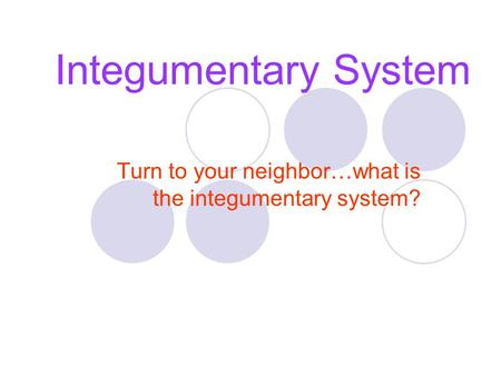 Integumentary System Turn to your neighbor…what is the integumentary system?
