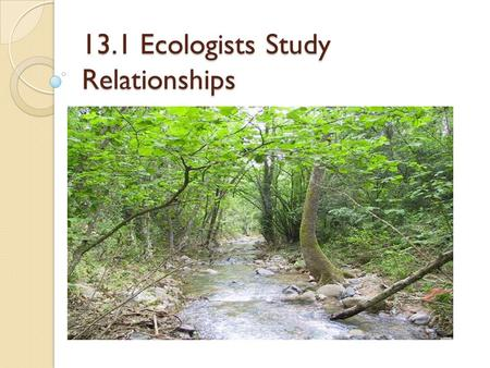 13.1 Ecologists Study Relationships. Introduction To Ecology Ecology – the study of living things and their relationship with each other and with the.