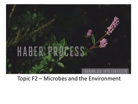 Topic F2 – Microbes and the Environment
