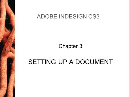 Chapter 3 ADOBE INDESIGN CS3 Chapter 3 SETTING UP A DOCUMENT.