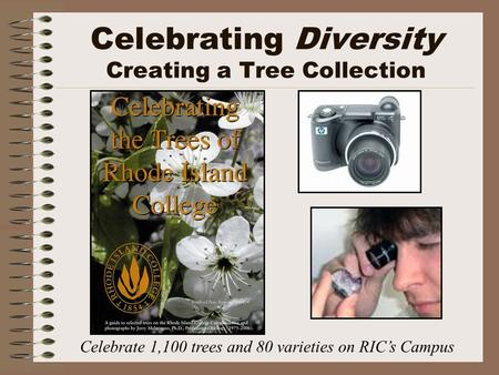 Celebrating Diversity Creating a Tree Collection Celebrate 1,100 trees and 80 varieties on RIC's Campus.