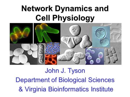 Network Dynamics and Cell Physiology John J. Tyson Department of Biological Sciences & Virginia Bioinformatics Institute & Virginia Bioinformatics Institute.