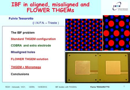 1 IBF in aligned, misaligned and FLOWER THGEMs The IBF problem Standard THGEM configuration COBRA and extra electrode Misaligned holes FLOWER THGEM solution.