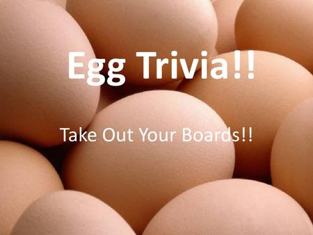 Egg Trivia!! Take Out Your Boards!!. Question 1 Which came first. The chicken or the egg?