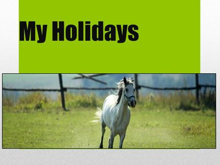 My Holidays. Camp I was in the Camp. Camp was in Dolní Přím. It was a horse camp. I was ride on Nebraska. This was great.