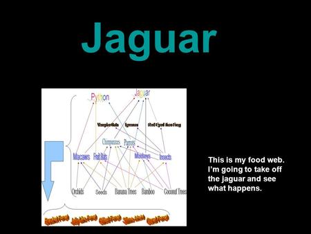 This is my food web. I'm going to take off the jaguar and see what happens. Jaguar.