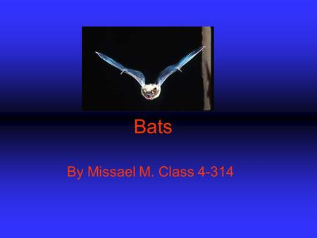 Bats By Missael M. Class 4-314. Driving Question: KINDS of FOODS DO BATS CONSUME?