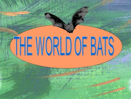 WHERE IN THE WORLD DO BATS LIVE? Bats can be found in almost every part of the world except where it is very, very hot or in the really cold areas and.