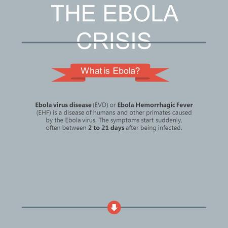 THE EBOLA CRISIS What is Ebola? Ebola virus disease (EVD) or Ebola Hemorrhagic Fever (EHF) is a disease of humans and other primates caused by the Ebola.
