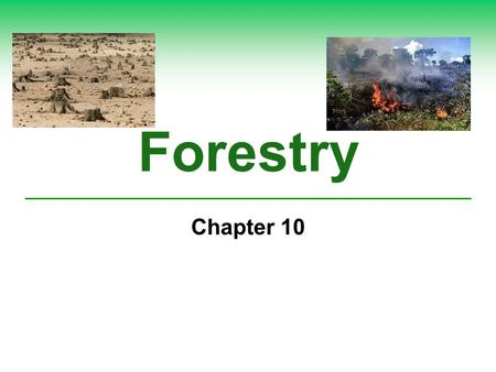 Forestry Chapter 10. What Are the Major Threats to Forest Ecosystems?  Forest ecosystems provide ecological services far greater in value than the value.
