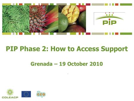 . PIP Phase 2: How to Access Support Grenada – 19 October 2010.
