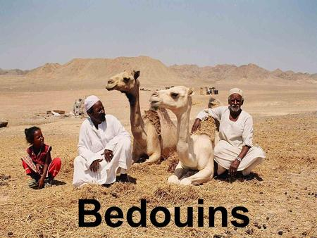 Bedouins. Bedouin Tent Bayt char – 'house of hair' - the black Bedouin tents are traditionally woven from goats' hair. The unexpected visitor will be.