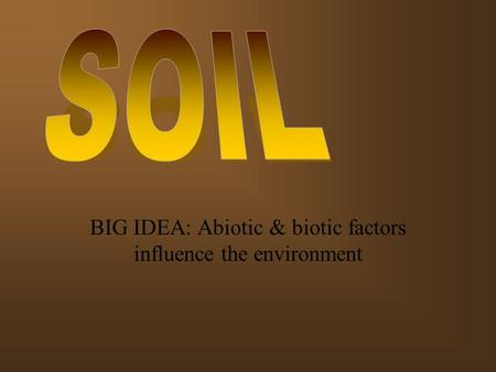 BIG IDEA: Abiotic & biotic factors influence the environment.