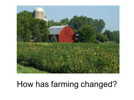How has farming changed?. Cattle Feedlots Chicken Farms.