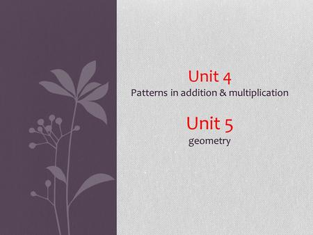 Unit 4 Patterns in addition & multiplication Unit 5 geometry.