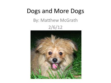 Dogs and More Dogs By: Matthew McGrath 2/6/12. The Shepherd's Dog By Mary Darby Robinson I liked this poem because it showed the dog's devotion to his.