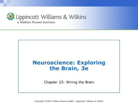 Copyright © 2007 Wolters Kluwer Health | Lippincott Williams & Wilkins Neuroscience: Exploring the Brain, 3e Chapter 23: Wiring the Brain.
