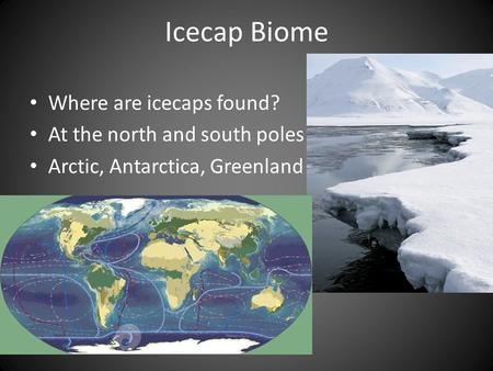 Icecap Biome Where are icecaps found? At the north and south poles Arctic, Antarctica, Greenland.