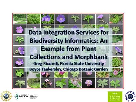Overview PlantCollections – Publish information about public garden collections – Using existing infrastructure Morphbank – Goals and capabilities of.