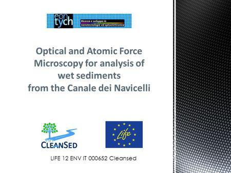 Optical and Atomic Force Microscopy for analysis of wet sediments from the Canale dei Navicelli LIFE 12 ENV IT 000652 Cleansed.