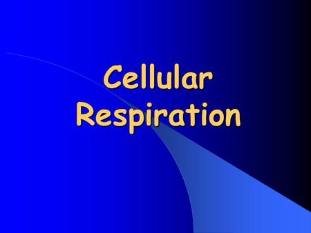 Cellular Respiration. All living things need energy Energy in the form of… Food =chemical energy Cell energy= ATP.