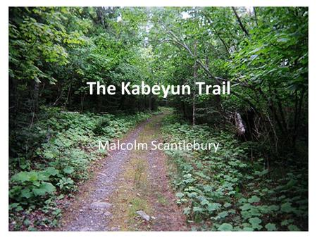 The Kabeyun Trail Malcolm Scantlebury. Sleeping Giant Provincial Park 244 square kilometres Located on the southern tip of the Sibley Peninsula, east.