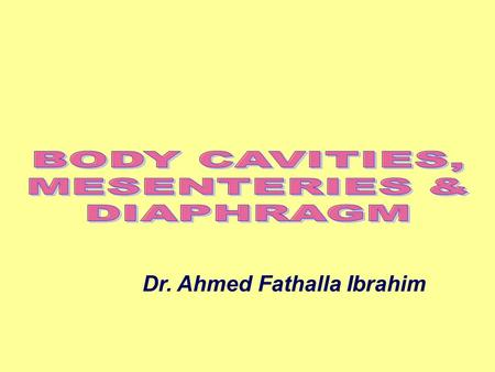 BODY CAVITIES, MESENTERIES & DIAPHRAGM Dr. Ahmed Fathalla Ibrahim.