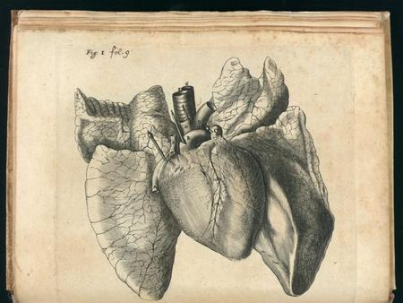 Introduction The heart pumps 7,000 liters of blood through the body each day The heart contracts 2.5 billion times in an average lifetime It takes approximately.