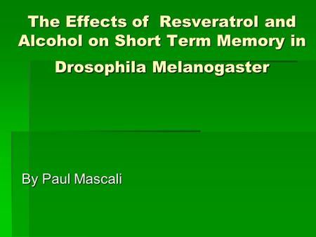 The Effects of Resveratrol and Alcohol on Short Term Memory in Drosophila Melanogaster By Paul Mascali.