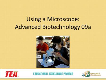 Using a Microscope: Advanced Biotechnology 09a. What is this?