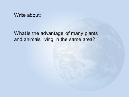Write about: What is the advantage of many plants and animals living in the same area?
