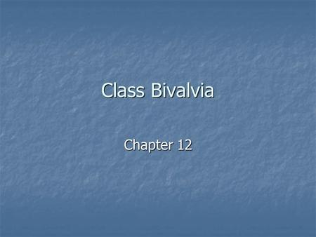 Class Bivalvia Chapter 12. Bivalves 2 nd largest molluscan class 2 nd largest molluscan class Includes the clams, oysters, mussels, and scallops Includes.