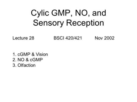 Cylic GMP, NO, and Sensory Reception Lecture 28BSCI 420/421Nov 2002 1. cGMP & Vision 2. NO & cGMP 3. Olfaction.