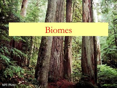 Biomes. What is a biome?  Biomes refer to a large region or area characterized by the following: 1. A particular pattern of the annual temperature and.