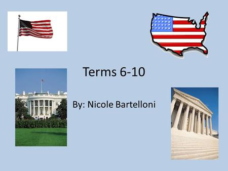 Terms 6-10 By: Nicole Bartelloni. Bureaucratic theory The bureaucratic theory is to have specialized people overseeing certain aspects of government,