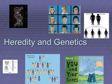 Heredity and Genetics Heredity and Genetics. How it all works  Dominant is the expressed trait. (That means the trait we see. So it gets a capital.