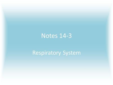 Notes 14-3 Respiratory System. The Air You Breathe The air you breathe in contains several different gases, shown in the circle graph on the left. The.