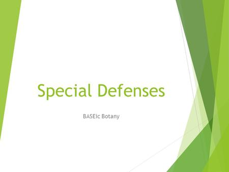 Special Defenses BASEic Botany. Plant Evolution  Over time plants have evolved with animals. The development of special defense structures allow plants.