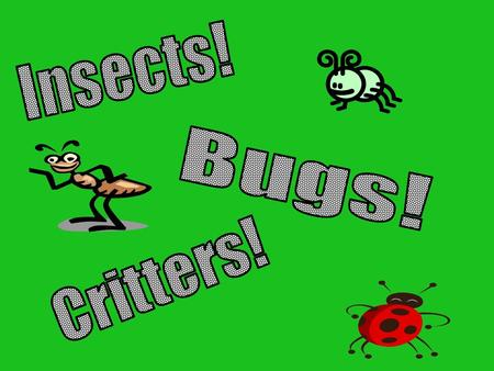 What do you know about INSECTS? Did you know that INSECTS have 3 ______________?