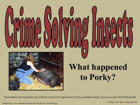 T. Trimpe 2009  Presentation developed for use with the Crime Solving Insects activity available at