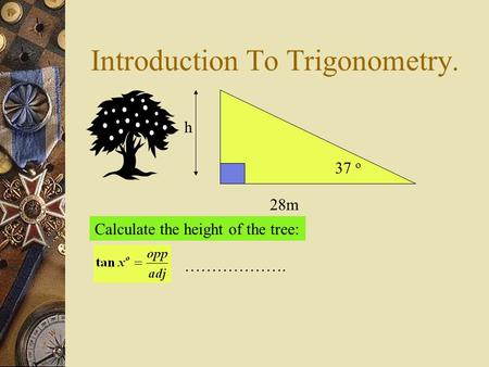 Introduction To Trigonometry. h 28m 37 o Calculate the height of the tree: ……………….
