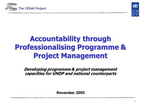 1 Accountability through Professionalising Programme & Project Management Developing programme & project management capacities for UNDP and national counterparts.