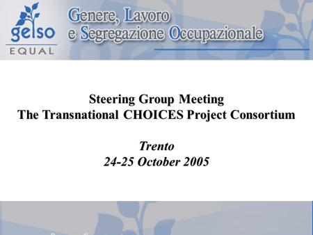 Steering Group Meeting The Transnational CHOICES Project Consortium Trento 24-25 October 2005.