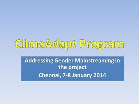Addressing Gender Mainstreaming in the project Chennai, 7-8 January 2014.