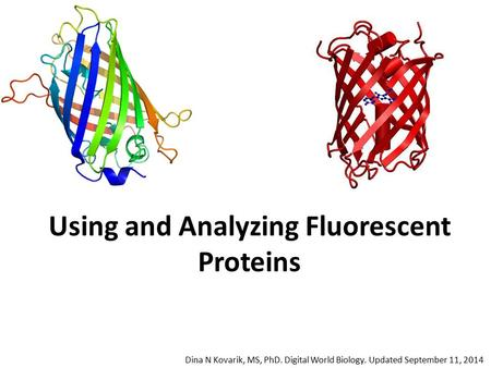 Using and Analyzing Fluorescent Proteins Dina N Kovarik, MS, PhD. Digital World Biology. Updated September 11, 2014.