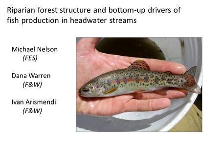 Riparian forest structure and bottom-up drivers of fish production in headwater streams Michael Nelson (FES) Dana Warren (F&W) Ivan Arismendi (F&W)